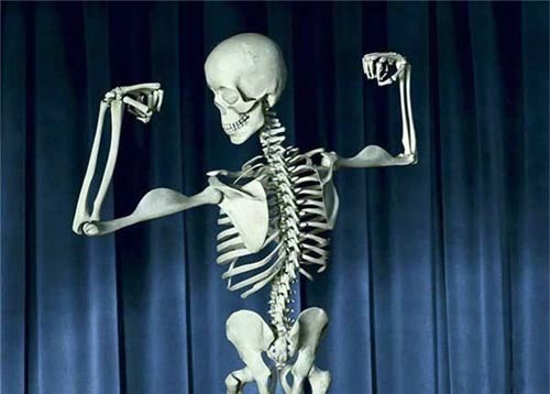 funny-skelton-body-builder